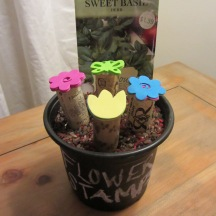Spring Flowers Potted Stamp Set w/Seeds to Plant